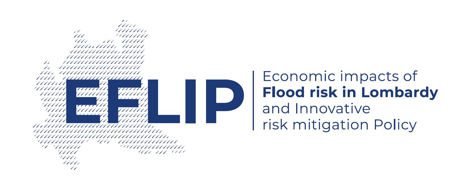 EFLIP-Project